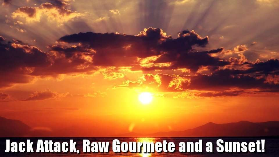 Jack attack, Raw Gourmet n a Sunset