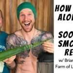 How to Use Aloe Vera & Soothing Smoothie Recipe w/ Brian Calvi from Farm of Life Costa Rica