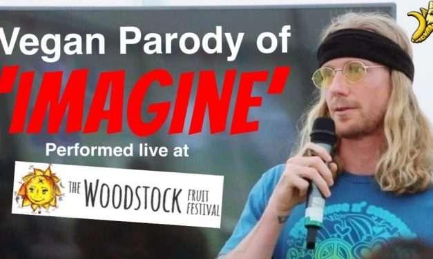 "Vegan Parody of ""Imagine"" Performed Live at The Woodstock Fruit Festival"