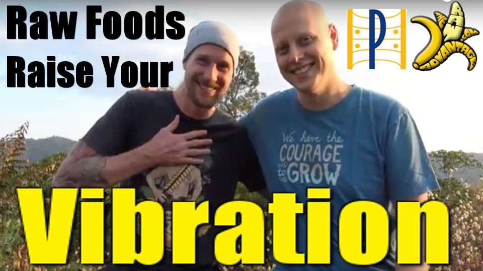Raw Foods Raise your Vibration w/ Planetary Awareness