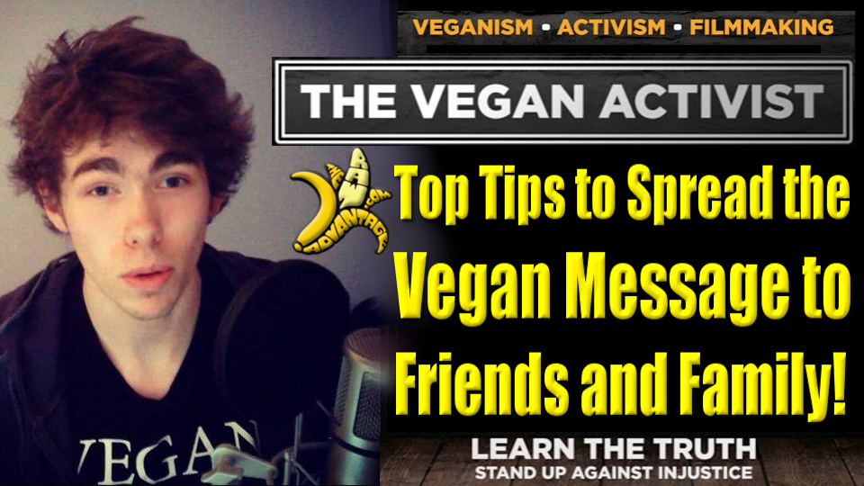 Vegan Activist – Top Tips to Spread the Vegan Message to Friends and Family