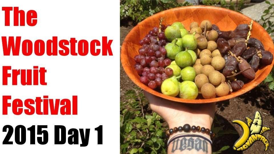 Woodstock Fruit Festival 2015 day 1