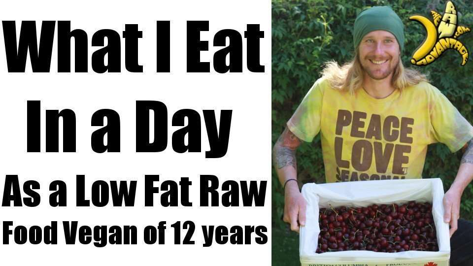 What I Eat in A Day, Low Fat Raw Vegan of 12 Years