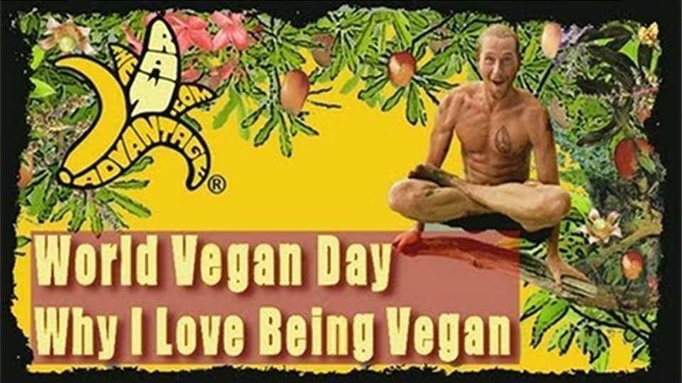 World Vegan Day, Why I love Being Vegan